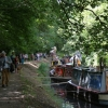 Canal Boats at Woking